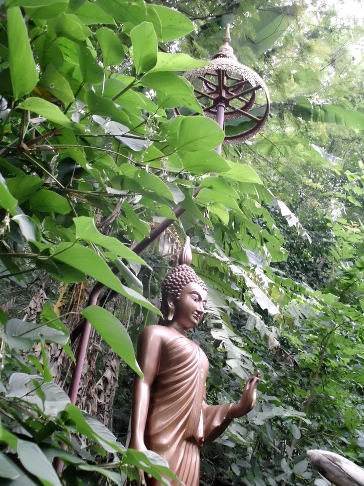Temple/Meditation Space near the Old Phuket Hotel in Karon