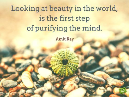 Looking at beauty in the world, is the first step of purifying the mind. Amit Ray.