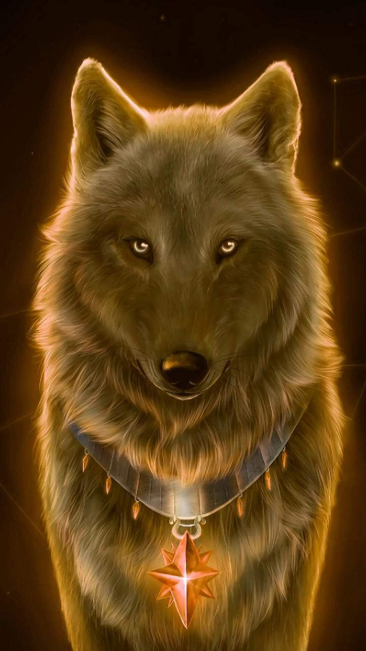Download Nice Wolf Wallpaper By Georgekev 70 Free On Zedge Now Browse Millions Of Popular Animal Wal Wolf Wallpaper Cute Wolf Drawings Wolf Spirit Animal