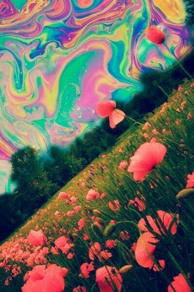 trippy sky by dixieee normus flowers trippy art psychedelic art – I'm Here for A…