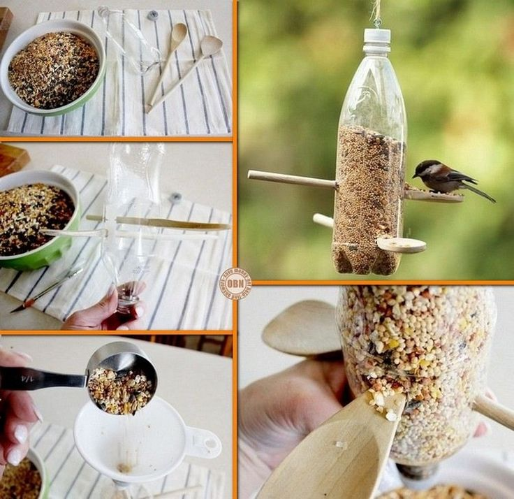 bouteille en plastique transformée en mangeoire à oiseaux pratique
