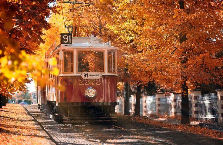 15мест, где осень особенно прекрасна