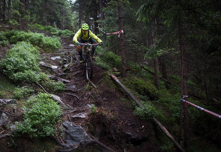 Downhill ride on professional tracks - Hard - Challenging roots on the mountain bike track.