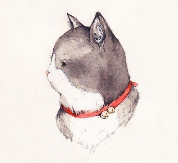 Adorable pet portraits by Sarah McNeil