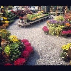 ...nice garden center display/endcaps