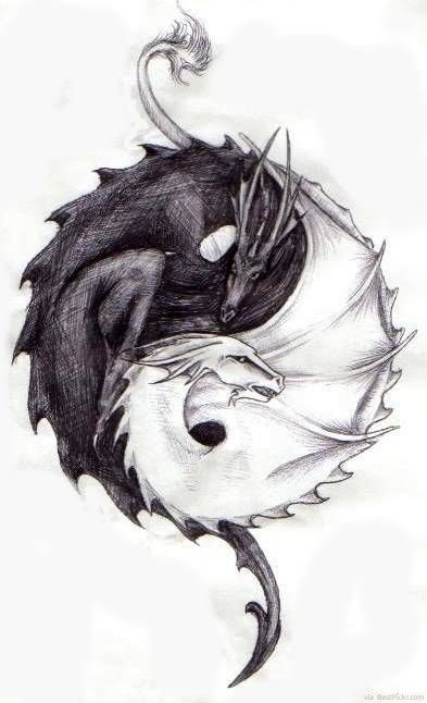 Yin and Yang  The killing dragon of Death in black and the healing Dragon of life in white