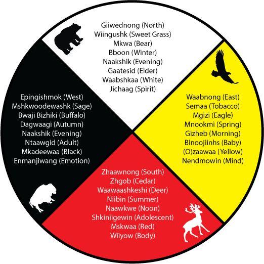 medicine wheel aboriginal - Google Search