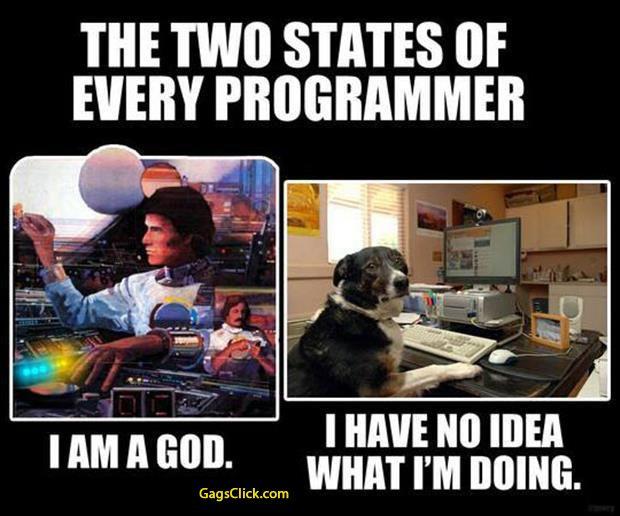 The Two States Of Every programmer .. I am God .. I have no idea What I M  Doing
