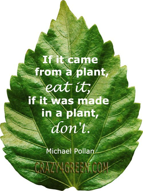 """If it came from a plant eat it.  If it was made in a plant, don't."" ~ Michael Pollan #organic #quote"