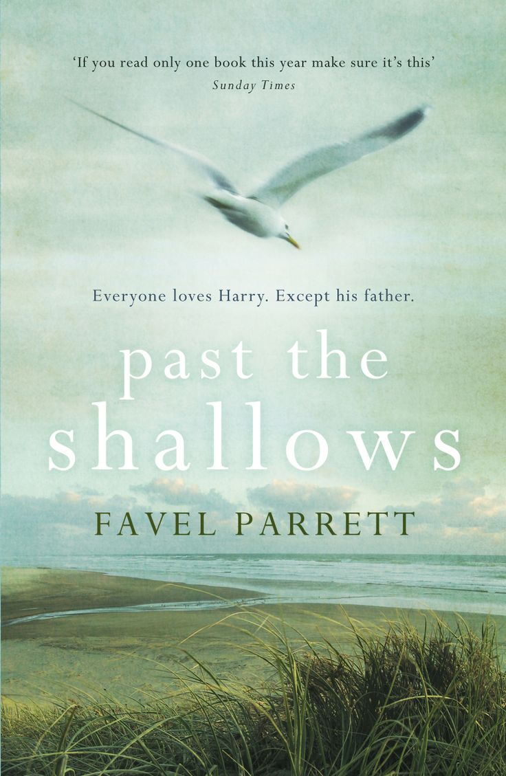 Past the Shallows, by Favel Parrett. See a review of the book at: http://louise-allan.com/2014/02/05/past-the-shallows-favel-parrett/