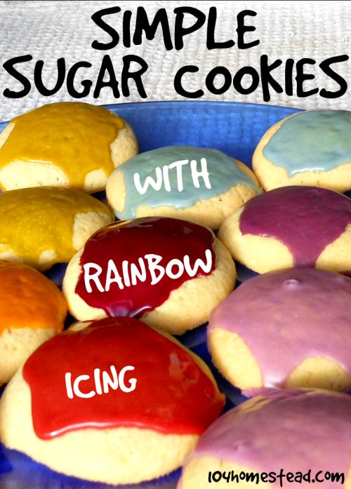 Simple Sugar Cookies with Rainbow Icing | The 104 Homestead
