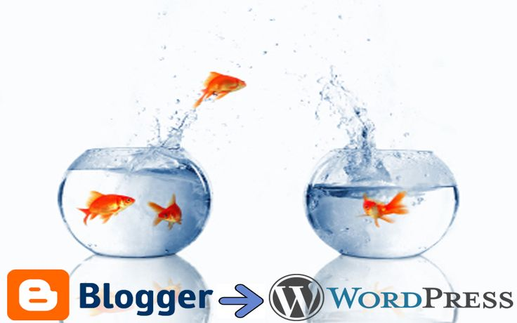 Wordpress migration
