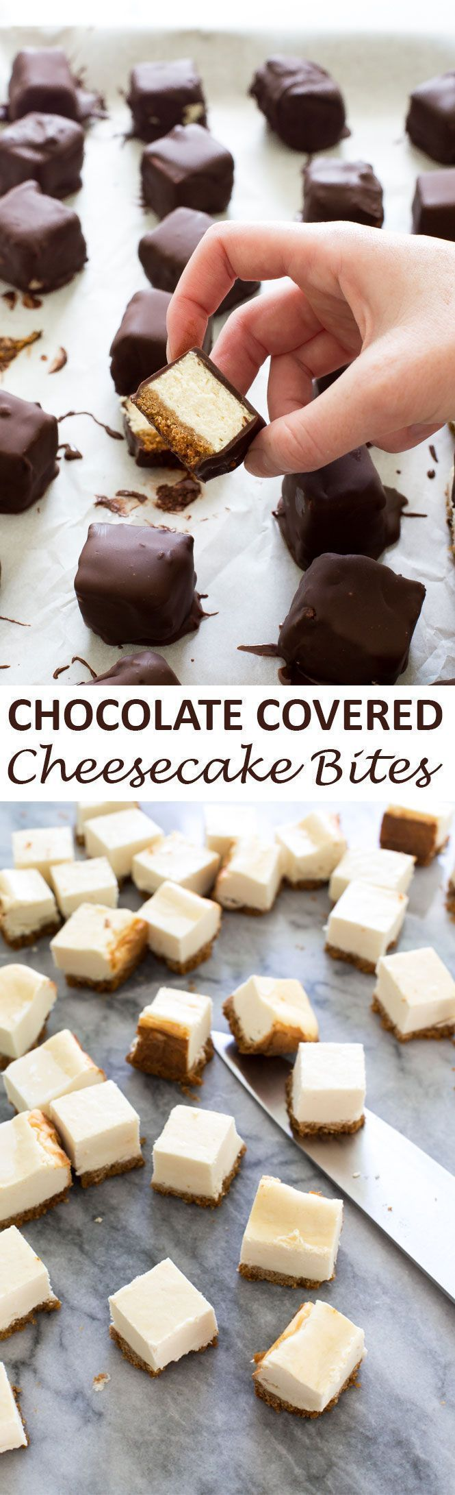 Chocolate Covered Cheesecake Bites. Perfect bite-sized cheesecake covered in a sweet chocolate shell coating. They are extremely addicting! | http://chefsavvy.com #recipe #chocolate #cheesecake #bites #dessert