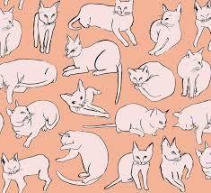 「Leah Goren cat print」の画像検索結果