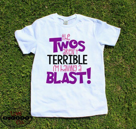 e72362405 Girls 2nd birthday shirt, two year olds, toddler shirt, second birthday  outfit, the twos aren't terr