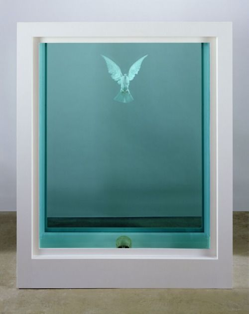 The Inescapable Truth - Damien Hirst #art ironic piece that the dove symbolises freedom yet is trapped within the formaldhyde