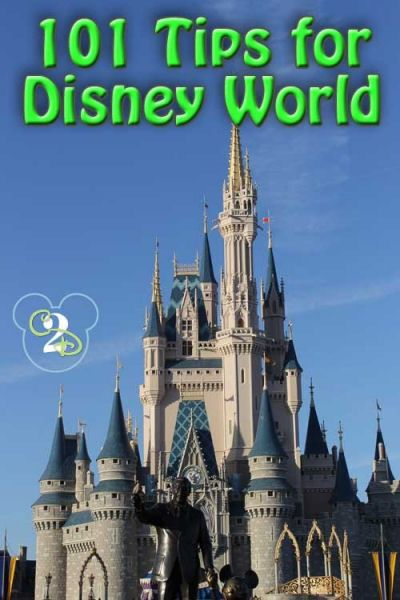 101 Tips for Disney World-attention all Reliv goers!