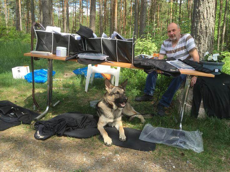 Nordiskt mästerskap för polishundar på Nyköpings Brukshundklubb