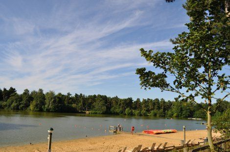 10 Best Center Parcs Elveden Forest Images On Pinterest Centre Family Holiday And Water Parks