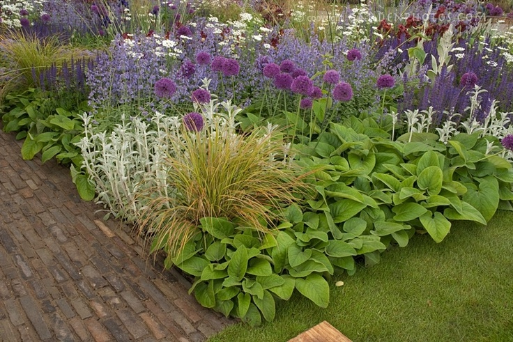 Hosta grass flora idea for front yard going to revamp for Grasses for flower beds