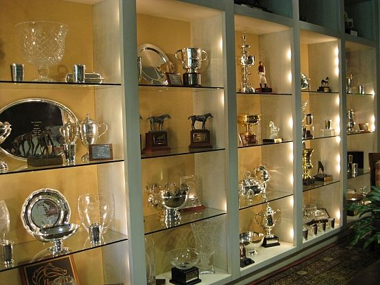 trophy case in trophy room