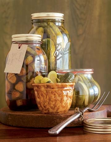 How to pickle and can. Great to preserve the upcoming summer bounty!