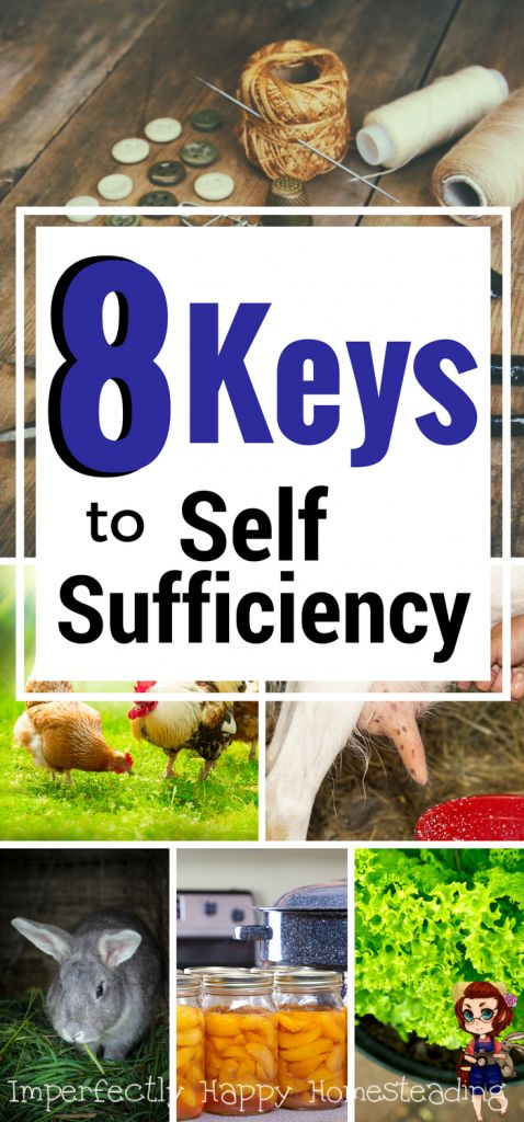 Self-sufficiency has become this online buzz word of late. But what is self-sufficiency and how can we achieve it as backyard farmers / homesteaders?