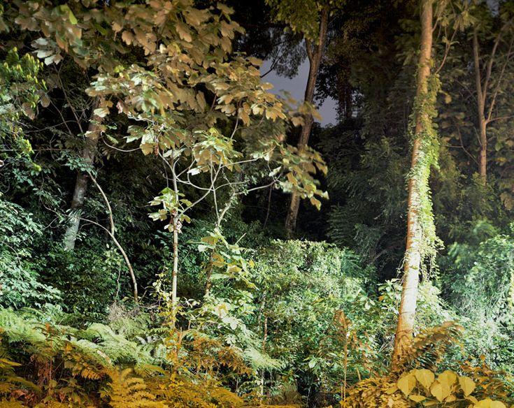 Peter Bialobrzeski photography - work - Paradise Now