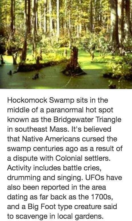 Hockomock Swamp