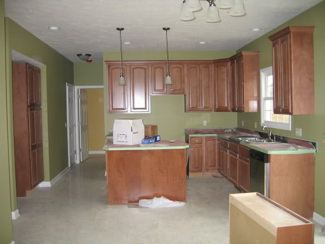 Sherwin williams bamboo shoot dream home pinterest for Nice colours for kitchen walls