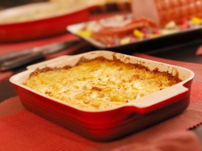 Ovenschotel met witlof, achterham, Camembert en champignons