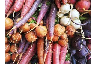 What Vegetables Grow Best in Western Washington Gardens | eHow