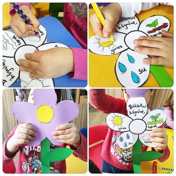 Bitkilerin ihtiyaclari Bunu buraya koyuyorum, kalıbı da facebooka atiyorum. öglenci arkadaslara kiyagim olsun #istanbul #besiktas #anaokulu #okuloncesietkinlik #etkinlikpaylasimi #bitkiler #plants #growing #craft #craftideas #craftforkids
