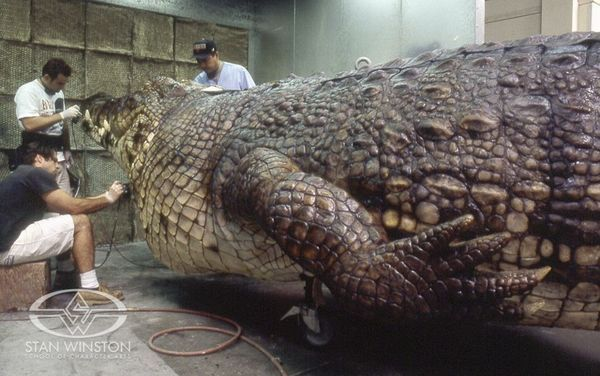 LAKE PLACID's huge animatronic crocodile comes to life in the paint booth at Stan Winston Studio.