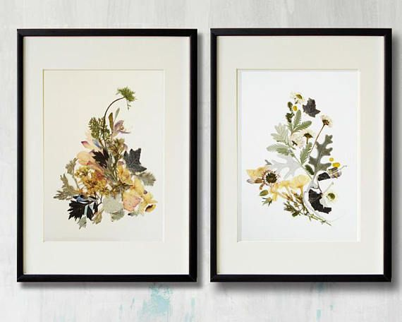 Set Of 2 Framed Prints Plant Art Contemporary Art Dry Flower Decor Herbarium Pressed Flower Frame Floral Print Wall Art Framed Floral Prints Framed Floral Prints Floral Wall Art Prints Plant Art