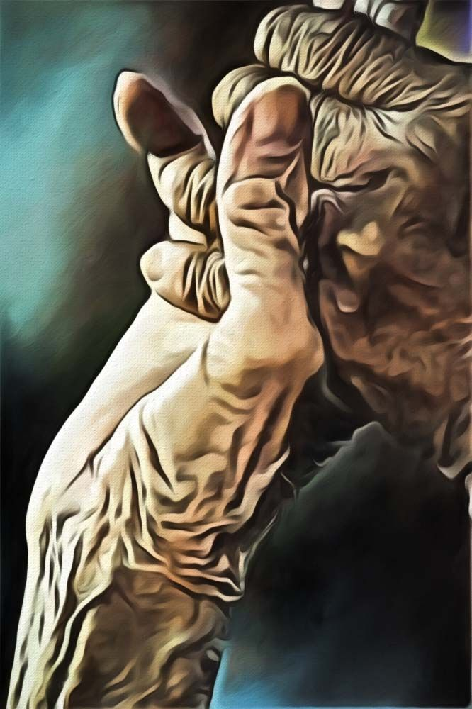Old Hands! Old Love! A digital art work by Dan Newburn from a photo found on the Internet.