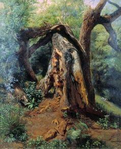 Лагорио Л. Ф. Старое дерево