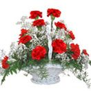 Send  online Red Carnation Basket to Hyderabad with free home Delivery.  Visit our site : www.flowersgiftshyderabad.com