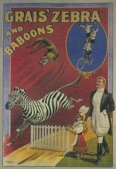 """Grais' Zebra and Baboons- Circus Canvas 78"""" x 114"""""""
