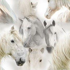 Úplet Wild horses digital print