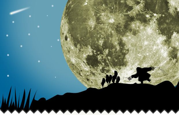 """Jardiner avec la lune, c'est une pratique héritée de la pratique """"naturelle"""" du jardinage. Mais ce peut-être un peu complexe à comprendre. En effet lune descendante lune décroissante ? un point sur les mots du jardinier de la lune !"""