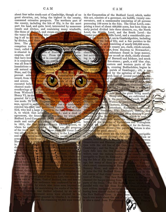 Flying Cat Wall Art Art Giclee Print Acrylic Painting by FabFunky, $12.00