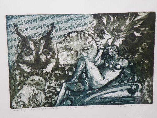 """Mészáros Marianna: Michelangelo """"Éjszakáját"""" meglepték a baglyok"""