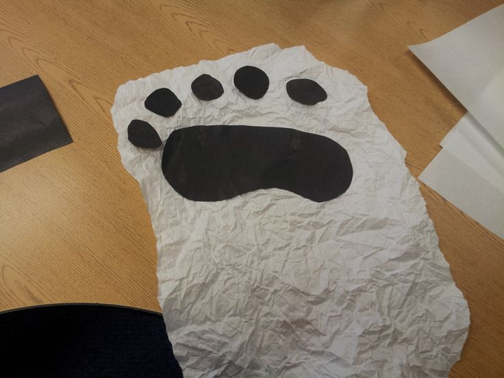 """We have learned all about Polar Bears this week! :) We started out learning a lot of facts about Polar Bears by making a """"Can, Have, Are"""" Tr..."""