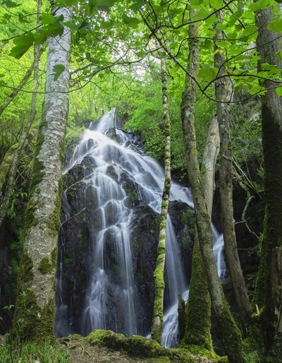 Cascada La Salgueira en Taramundi