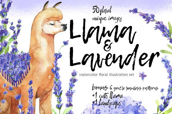 Lama & Lavender-watercolor set by Kat_Branch on @creativemarket