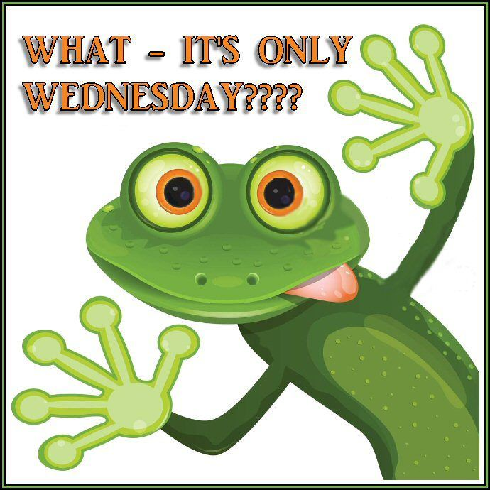 Cute Frog Quotes: Wednesday Frog