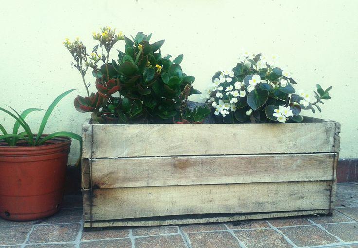 #reciclado #pallet #macetero