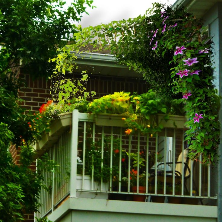 Balcony Furniture for Small Balconies | Most terraces and balconies can accommodate a few plants of your ...