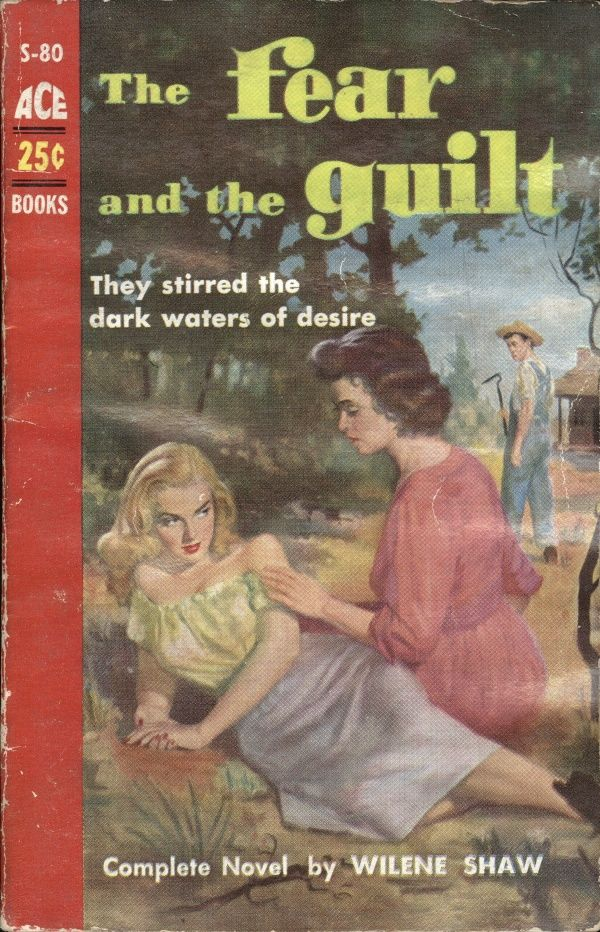 18 best lgbt literature images on pinterest vintage lesbian book i read the back of this book and it is apparently about the two fandeluxe Gallery